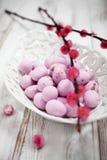 Chocolate de Pascua imágenes de archivo libres de regalías