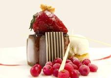 Chocolate Delice Royalty Free Stock Photos