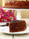 Chocolate delicious cake Stock Image