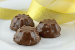 Chocolate delights. Marshmallow covered chocolate cookies with a gold ribbon Royalty Free Stock Image