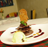 Chocolate dessert. Gourmet chocolate dessert with vanilla icecrem stock photos