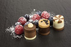 Chocolate dessert with berries Royalty Free Stock Photography