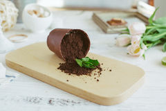 Chocolate dessert in the form of a fallen flower pot Royalty Free Stock Photography
