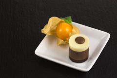 Chocolate dessert with physalis Stock Images
