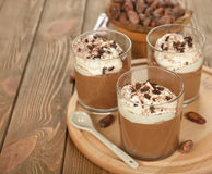 Chocolate dessert with whipped cream Royalty Free Stock Photography