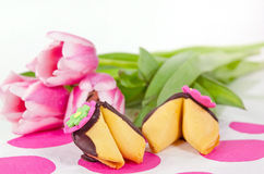 Chocolate dipped fortune cookies Stock Photo
