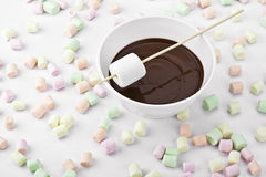 Chocolate dipped marshmallows. American beaten Stock Photography