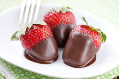 Chocolate dipped strawberries Stock Images