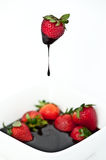 Chocolate dipped strawberry Stock Image
