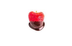 Chocolate Dipped Strawberry on White Stock Photos