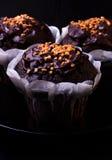 Chocolate do queque com porcas Foto de Stock
