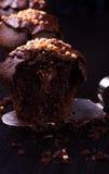 Chocolate do queque com porcas Fotos de Stock Royalty Free