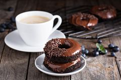 Chocolate donuts with coffee and blueberries Stock Photos