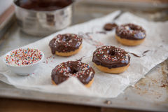 Chocolate Doughnuts with sprinkles Royalty Free Stock Images