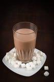 Chocolate drink and maskmallows Stock Photos