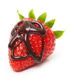 Chocolate drop on red berry strawberry Royalty Free Stock Images