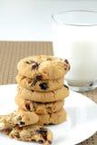 Biscoitos brancos do chocolate e da airela Fotografia de Stock Royalty Free