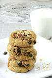 Biscoitos brancos do chocolate e da airela Foto de Stock Royalty Free