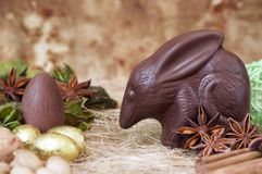 Chocolate Easter bilby Royalty Free Stock Images