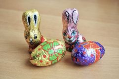 Chocolate easter bunnies Stock Images
