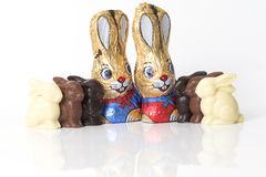 Chocolate easter bunnies on white background. Chocolate easter bunnies with reflection on white background Stock Photography