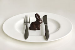 Chocolate Easter bunny Stock Images