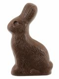 Chocolate Easter Bunny. Isolated on a white background Stock Photo