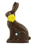 Chocolate Easter Bunny Royalty Free Stock Photos