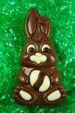Chocolate Easter Bunny. A chocolate easter bunny on easter basket grass stock images