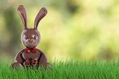 Chocolate easter bunny with eggs and red bow-knot . 3d render. Chocolate easter bunny with eggs and red bow-knot. 3d rendering Royalty Free Stock Images