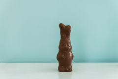 Chocolate easter bunny without foil wrap stock images