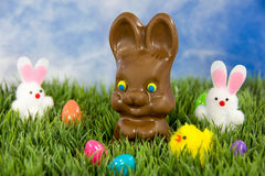 Chocolate Easter bunny in grass Royalty Free Stock Photo