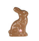 Chocolate easter bunny isolated with path Stock Images