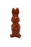 Chocolate Easter Bunny. Stock Photos