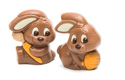 Chocolate easter bunny isolated Stock Image