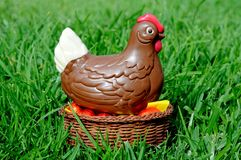 Chocolate Easter chicken. Stock Images