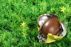 Chocolate easter egg Stock Photos