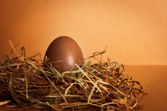 Chocolate Easter Egg. In a bird's nest Royalty Free Stock Photos