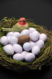 Chocolate Easter egg among sugar coated candy marble eggs in birds nest Royalty Free Stock Image
