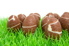 Chocolate easter eggs Stock Image