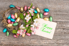 Chocolate easter eggs and apple tree blossoms. Spring flowers Royalty Free Stock Images