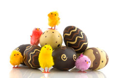 Chocolate easter eggs with chicks Stock Photography