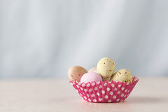 Chocolate easter eggs with copy space Stock Photography