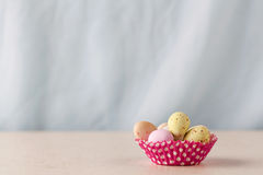 Chocolate easter eggs with copy space Royalty Free Stock Photos