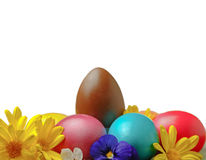 Chocolate easter eggs with fresh spring flowers Royalty Free Stock Image