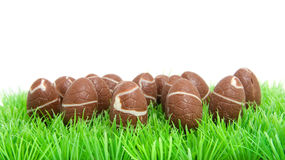 Chocolate easter eggs in grass Royalty Free Stock Photography