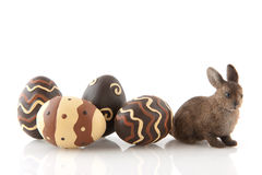 Chocolate easter eggs with hare Stock Image