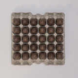 Chocolate Easter eggs on a recycled paper tray Stock Image