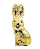 Chocolate easter rabbit Royalty Free Stock Image