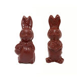 Chocolate Easter rabbits Royalty Free Stock Photography